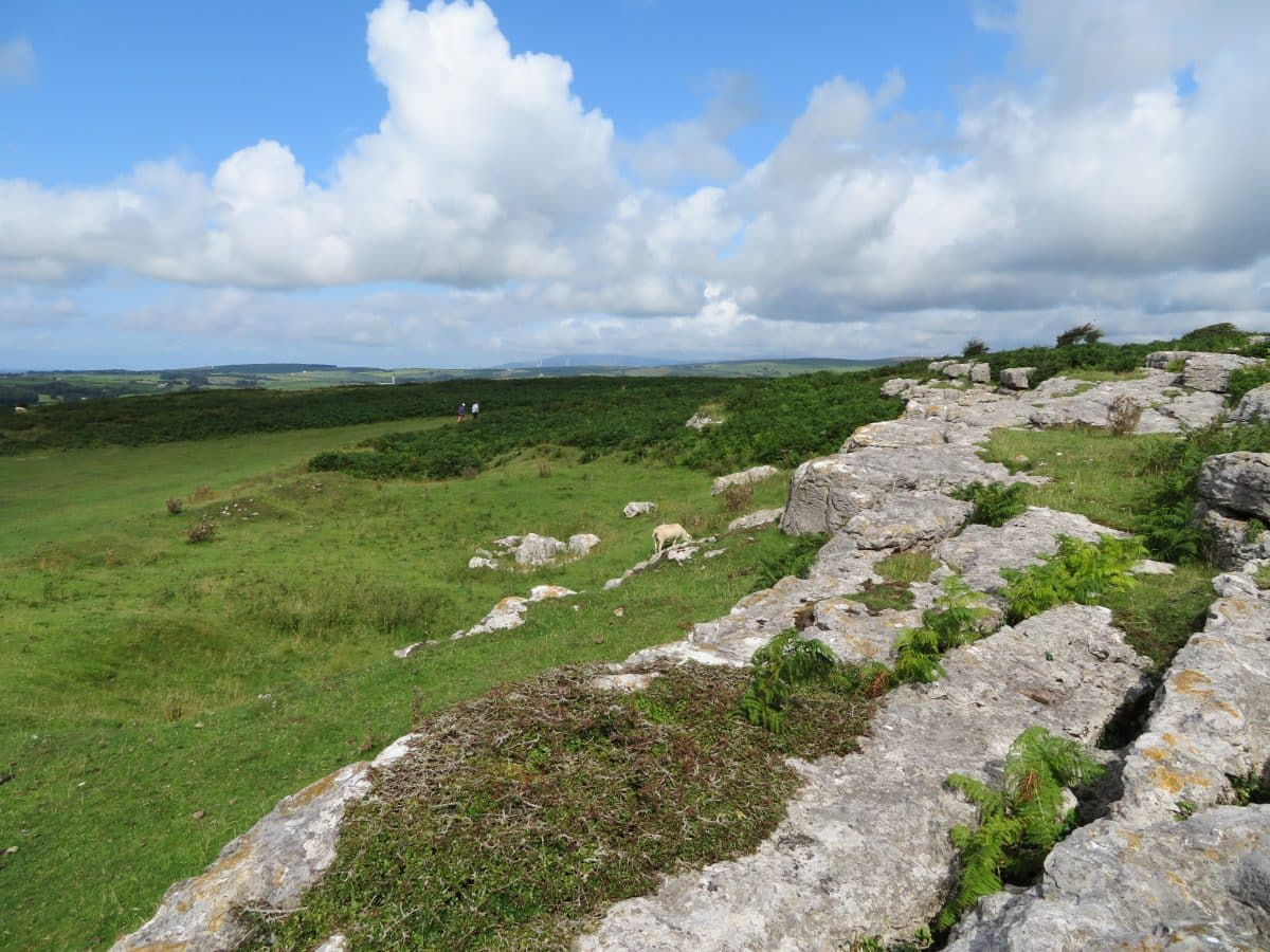 Limestone pavement on Birkrigg Common overlooking Kirkby Moor
